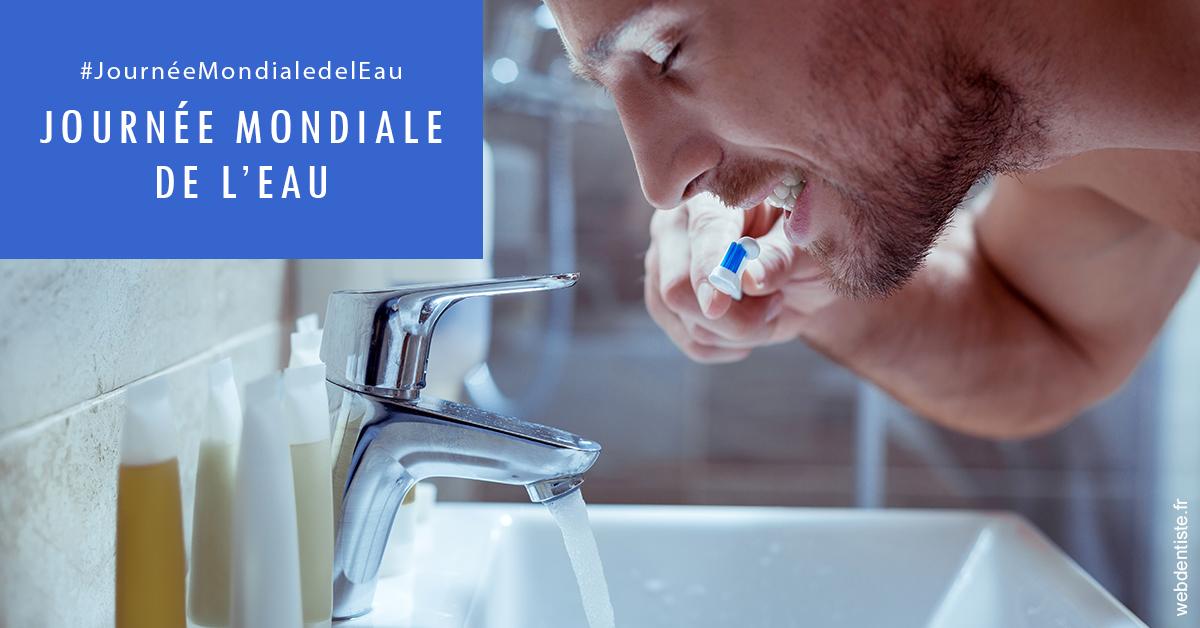 https://dr-pichon-denis.chirurgiens-dentistes.fr/Journée de l'eau 2